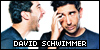 David Schwimmer: